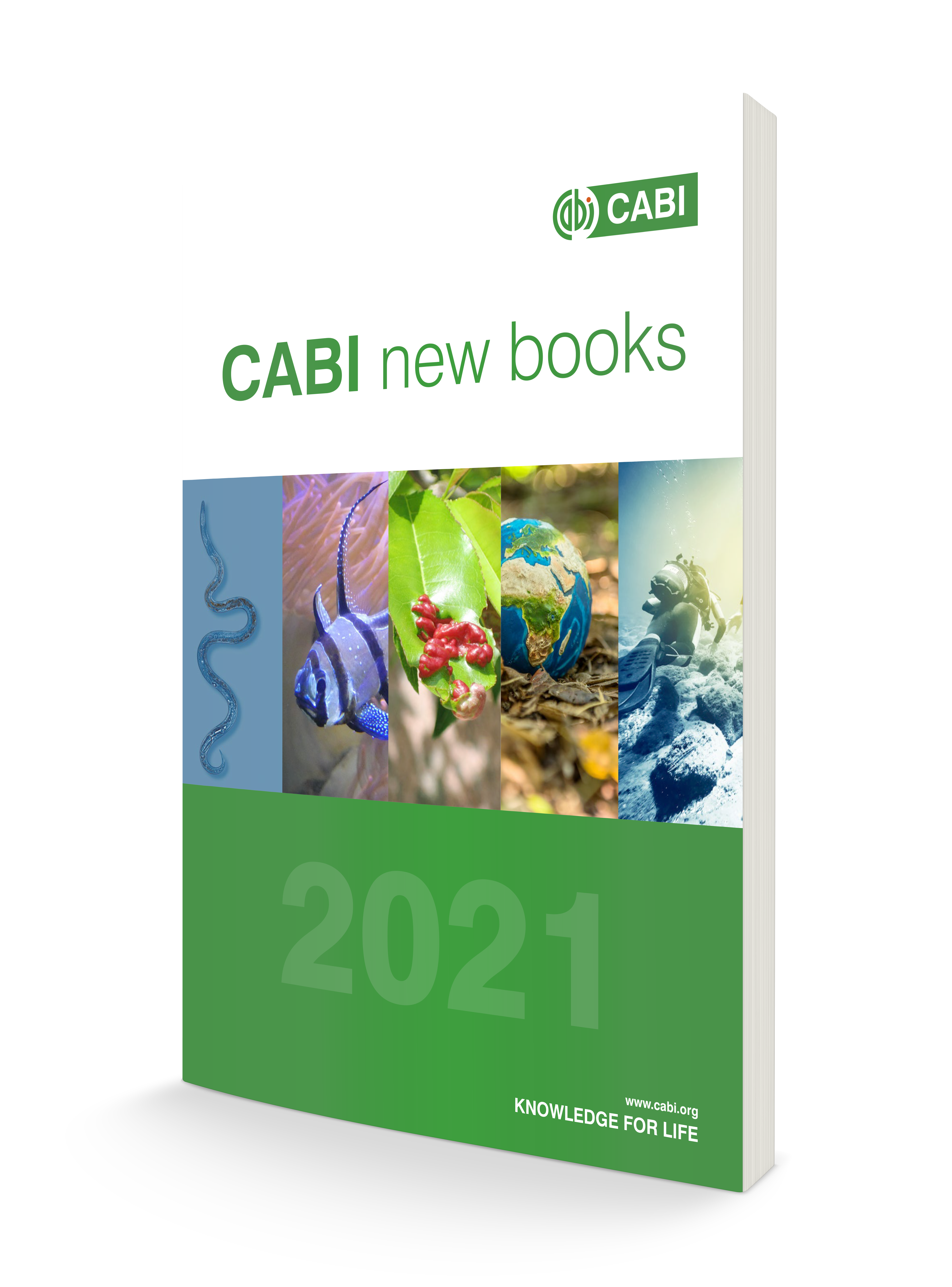 Books Catalogue 2021
