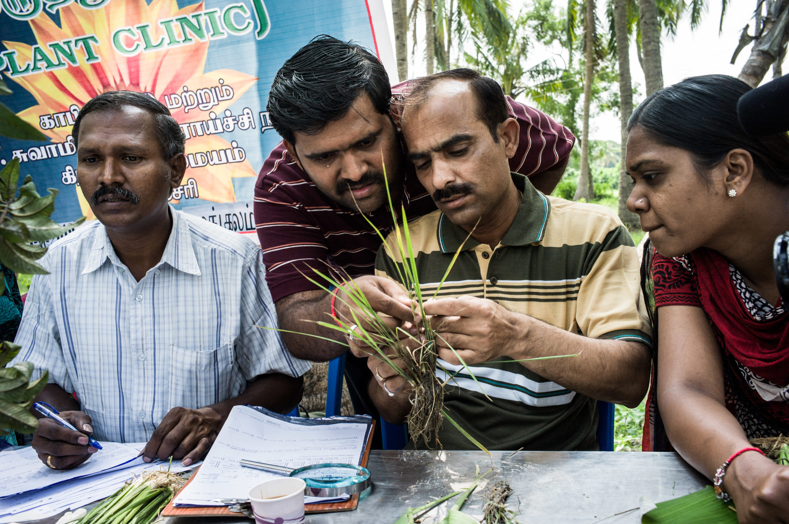 Plant clinic in India