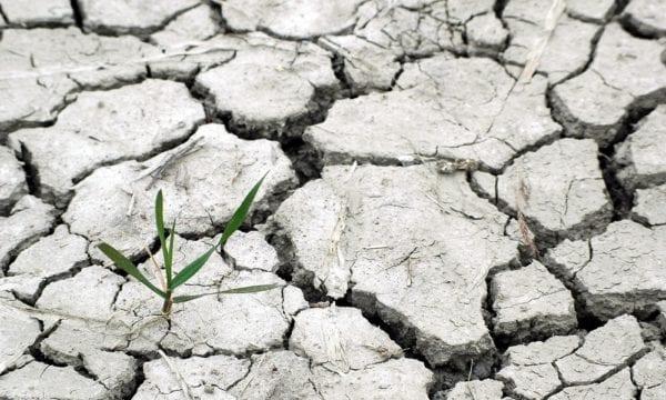 Climate change drought