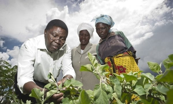 Plantwise plant doctor helping female farmers in Kenya