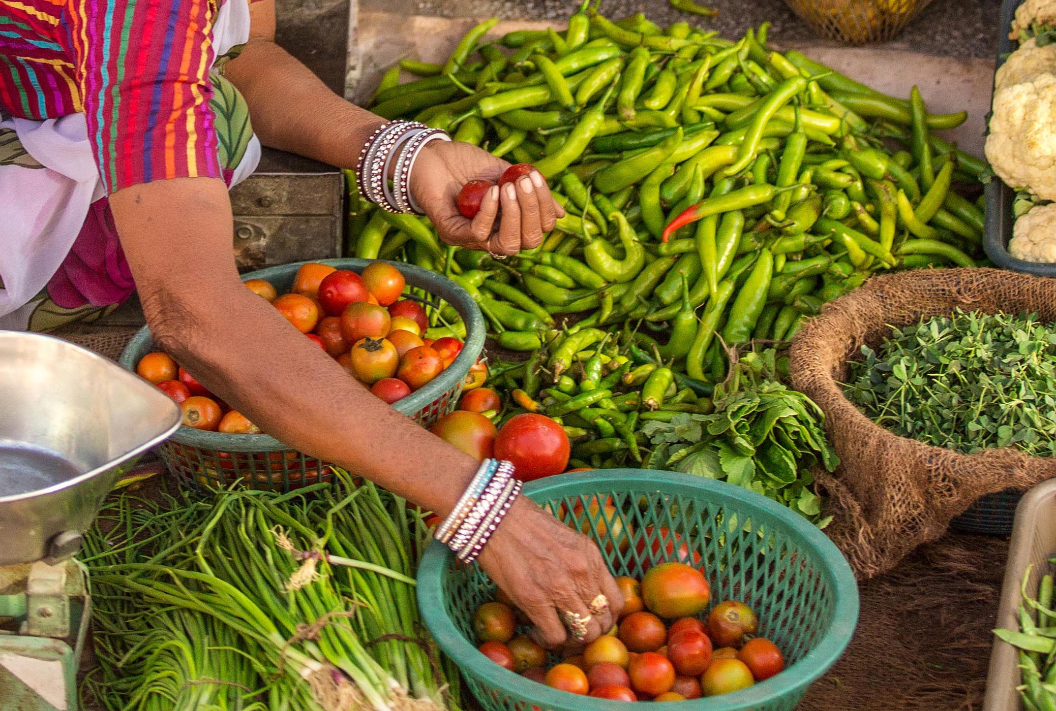 Detail of the hands of an Indian woman selling vegetables in Jodhpur, Rajasthan