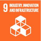 SDG 9 logo