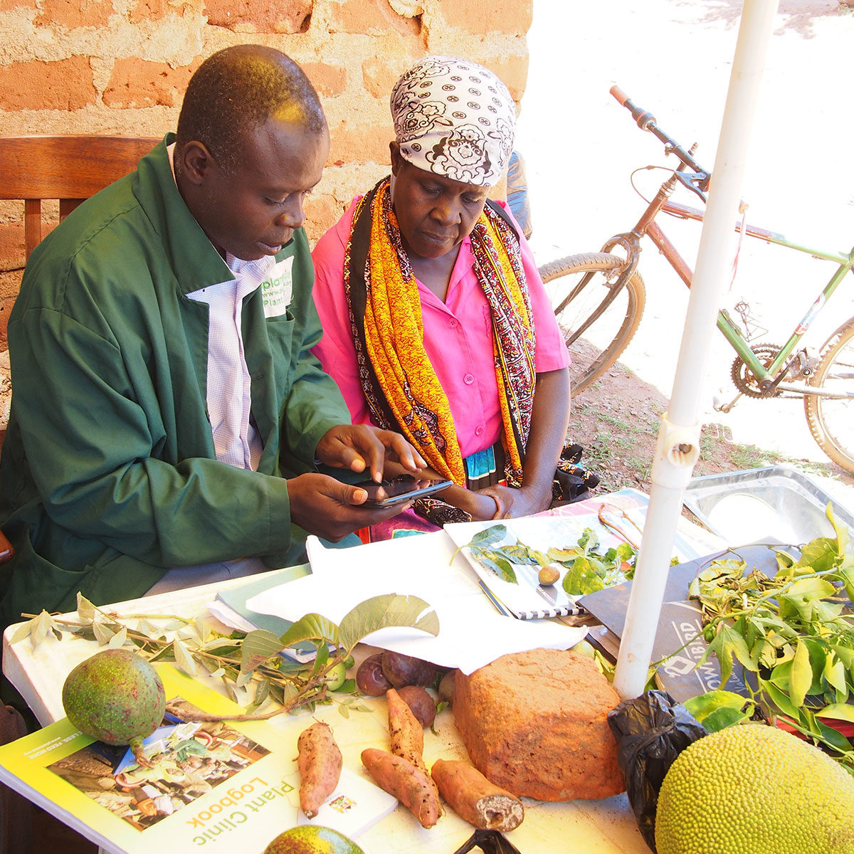 A farmer and plant doctor at a plant clinic in Kenya