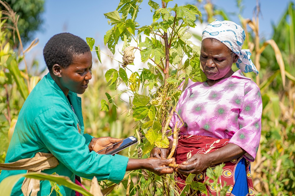 Two women assess a plant in a field, supported by a digital advisory tool.