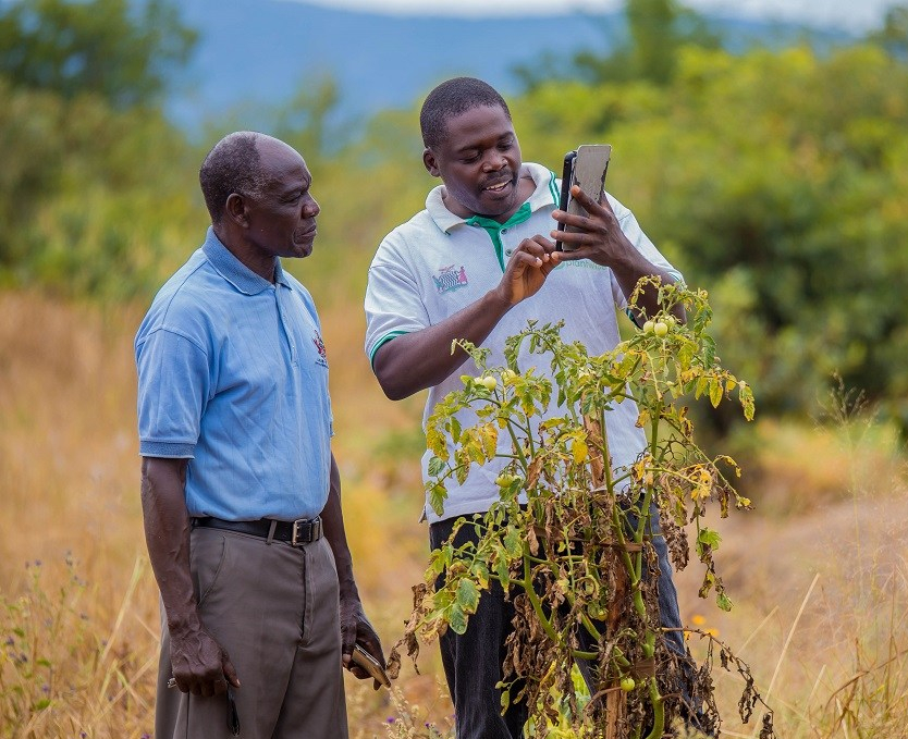 Chinyunyu Plant Clinic in Rufunsa district, Zambia.