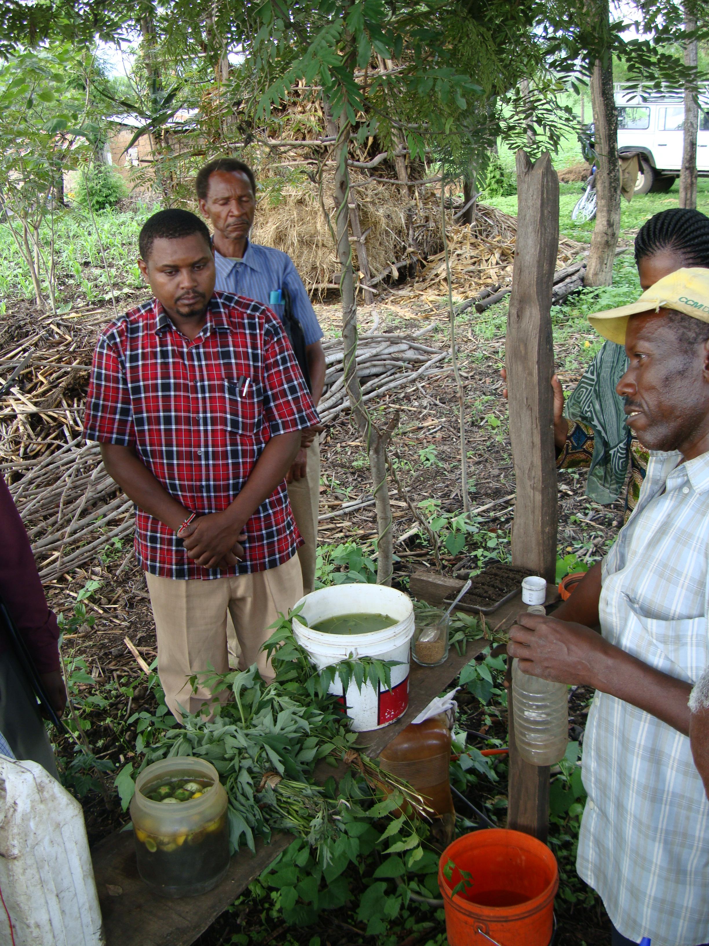 farmers producing botanica pesticides IPM tomato tanzania MAKINGBOTATNICALS0664 by stoepfer