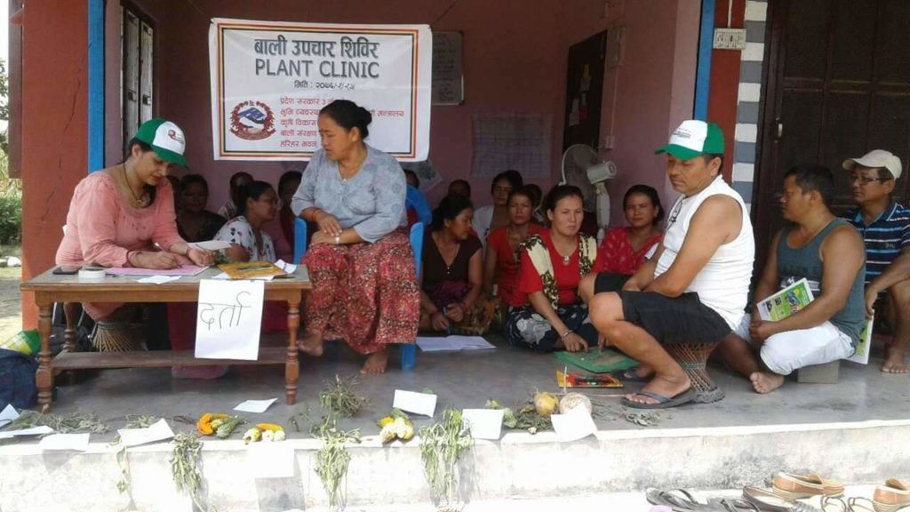 Plant clinic in Nepal