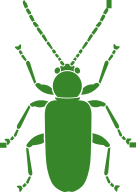 Strengthen detection and response to pest outbreaks